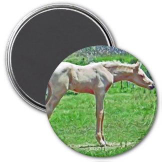 Curiouse Colt 7.5 Cm Round Magnet