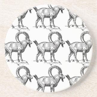 curl horn ibex coaster