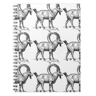 curl horn ibex notebook