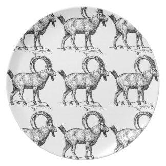 curl horn ibex plate