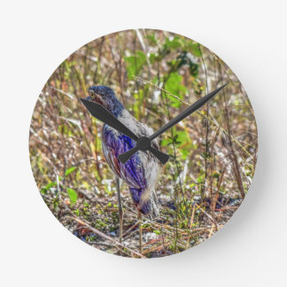 CURLEW AUSTRALIA WITH ART EFFECTS CLOCKS