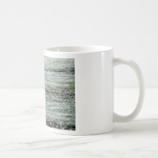 CURLEW RURAL QUEENSLAND AUSTRALIA COFFEE MUG
