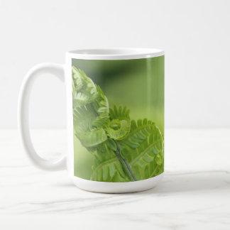 Curling Fern Leaves, Greenery, Blurred Background Coffee Mug