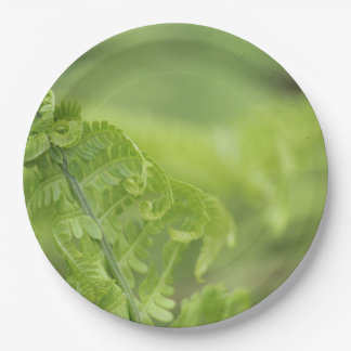Curling Fern Leaves, Greenery, Blurred Background Paper Plate