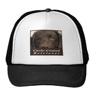 Curly-Coated Retriever Cap