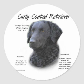Curly-Coated Retriever History Design Classic Round Sticker