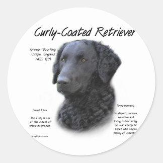 Curly-Coated Retriever History Design Round Sticker