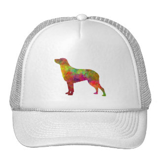 Curly Coated Retriever in watercolor Cap