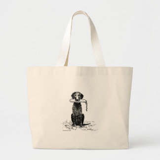 Curly Coated Retriever with Bumper Bag