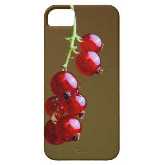 Currants Fruit Phone Case iPhone 5 Case