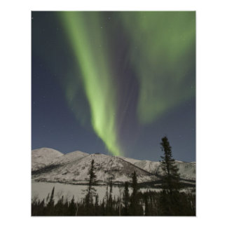 Curtains of aurora borealis dance across the sky poster