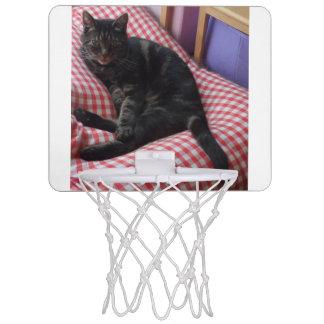 Curte Dave MinI Basketball Hoop