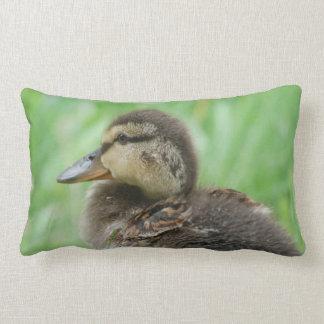 Cushion Duckling duck chicken