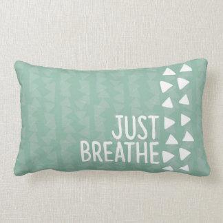 cushion Just Breathe