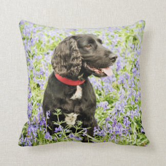 cushion with black spaniel in bluebells
