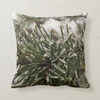 Cushion with frosty spruce twig