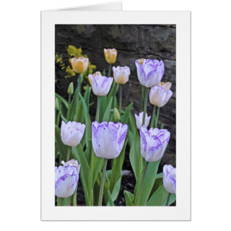 """CUST. GREETING CARD, """"PURPLE AND WHITE TULIPS"""" CARD"""
