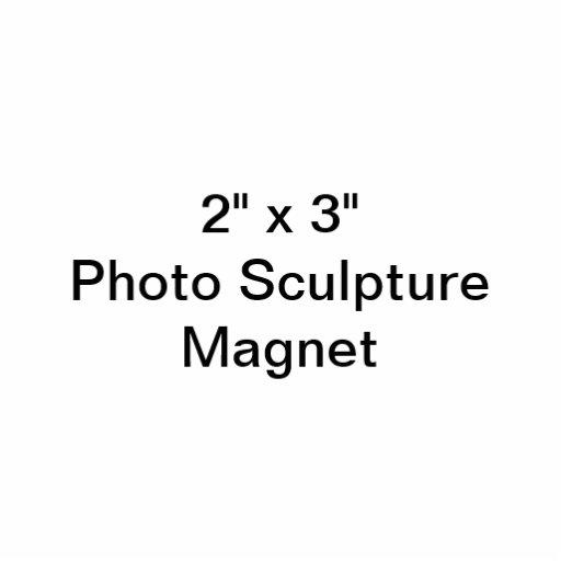 "Custom 2"" x 3"" Photo Sculpture Magnet"