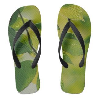 Custom Adult, Wide Straps Thongs
