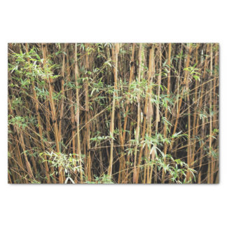 Custom Bamboo Jungle Tissue Paper