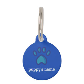 Custom collar tag for dogs bright blue and orange
