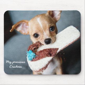 Custom Cute Chihuahua Mouse Pad Photo