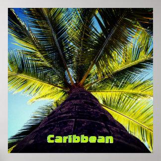 Custom Destination Tropical Palm Tree Poster