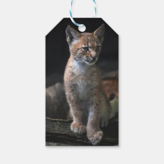 Custom Gift Tags with lynx face portrait