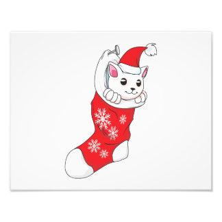 Custom Merry Christmas White Kitten Cat Red Sock Photo Art