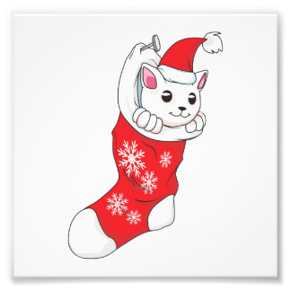 Custom Merry Christmas White Kitten Cat Red Sock Photographic Print