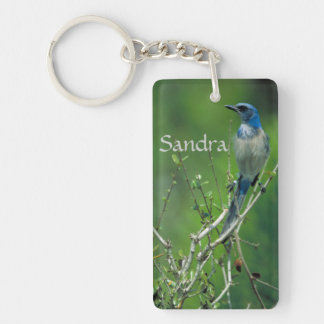 Custom Name Florida Scrub Jay Key Ring