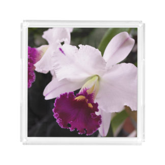 Custom Orchid Garden Serving Tray