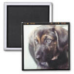 Custom Personalised Photo Gift Square Magnet
