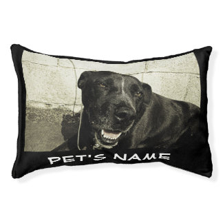Custom Personalized Name Color Photo Pet Bed