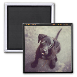 Custom Personalized Photo Gift Square Magnet