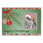 Custom Pet Christmas cards