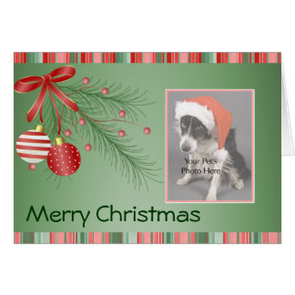 Custom Pet Photo Christmas cards