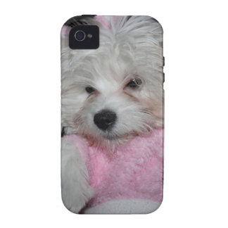 Custom Pet Photo Theme Case For The iPhone 4