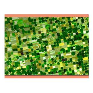 Custom Postcard - American Agriculture