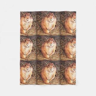 "Custom Small Fleece Blanket ""Gordo"" Happy Gopher"