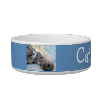Custom Tabby Cat Pet Bowl