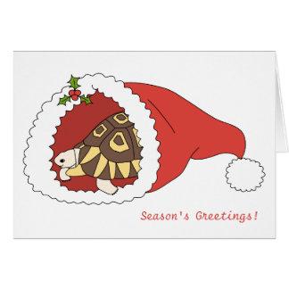 Customisable Angulate Tortoise Christmas Card