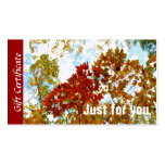 Customisable Colourful Fall Leaves Gift Pack Of Standard Business Cards