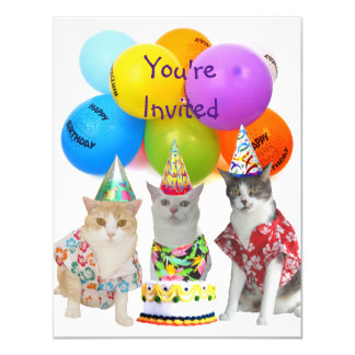 Customisable Funny Cats Birthday Party Invitation