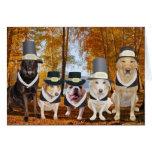Customisable Funny Dog Pilgrims Thanksgiving Card