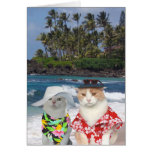 Customisable Funny Surfer Cats/Kitties Anniversary Greeting Card