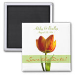 Customisable Orange Tulip Save the Date Magnet