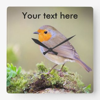 Customisable Robin clock add your own text
