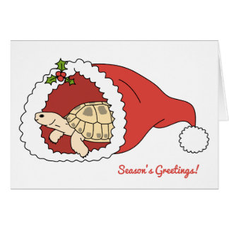 Customisable Russian Tortoise Christmas Card