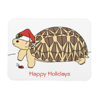 Customisable Star Tortoise Holiday Magnet